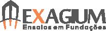 Exagium – Ensaios em Fundações